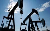 Pumpjacks at work pumping crude oil near Halkirk, Alberta   Photo: Larry MacDougal, The Canadian Press