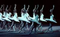 Ballet in Blue members of the famous Bolshoi Ballet during a performance of Swan Lake in Moscow Photo: ALAMY