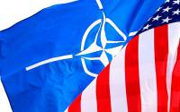 NATO receives 75% of its funding from the US. Basically, it IS NATO.