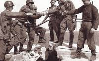 U.S. and Soviet Russian troops meet at the Elbe River in 1945   Photo: U.S. Army