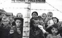 Кто сказал, что на Украине забыты уроки истории?