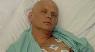 Операция «Белуга»: убийство Литвиненко было проделкой англосаксов