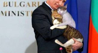 Katze von Putins Nachbarin in Panama Papers