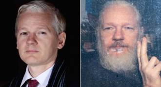 Ron Paul: Julian Assange Is a Political Prisoner Because He Embarrassed the US Government