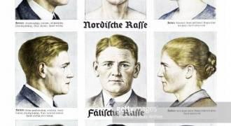 The Long-Term Plan to Destroy German Genetics Through Outbreeding