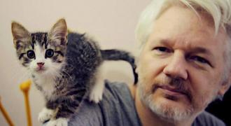 The UN Finds Assange Victim of Brutal Psychological Torture