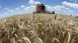 Double Insult to Russophobes - Syria to Get 5000 Tons of Grain from Russian Crimea
