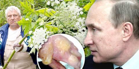 Владимир Окаянный, или Британские ученые обвиняют...