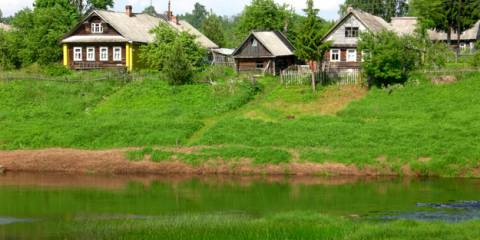 Life in the Countryside Outside St. Petersburg, Russia - A Summer Letter From Orlino