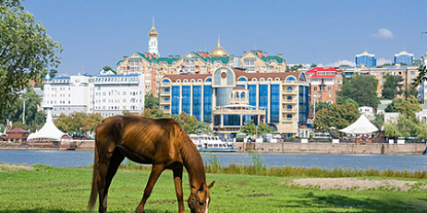 Horse grazing in the background of the waterfront city of Rostov-on-Don | Photo: Lori, Vostock-Photo