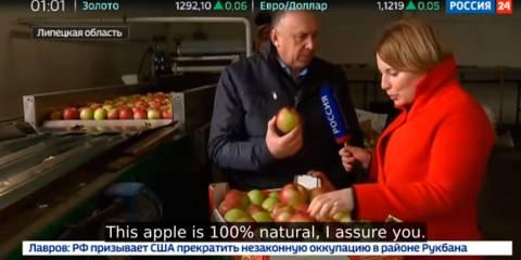 Good Profile of Russia's Booming Agricultural Black Earth Heartland - Lipetsk (Russian TV)