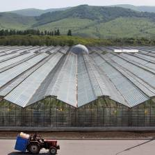 Russia now exports more in food than in weapons