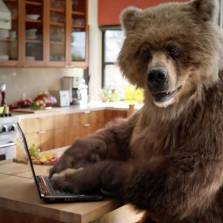 WashPo's Bogus 'Kremlin Troll' Exposé Destroyed in Alt-Media Counterpunch
