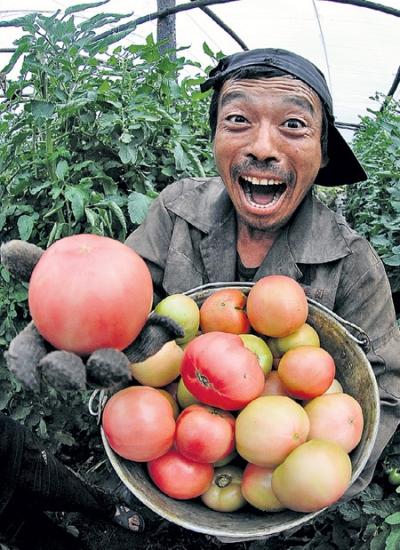 Chinese Food Imports Contamination
