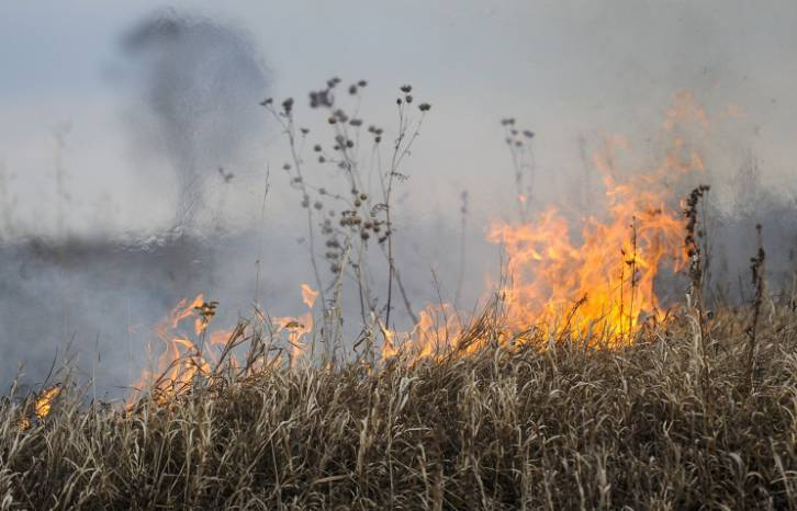 <figcaption>Wildfire-hit area in Russia's Siberia continues to grow   Photo: Yevgeny Kurskov, TASS</figcaption>