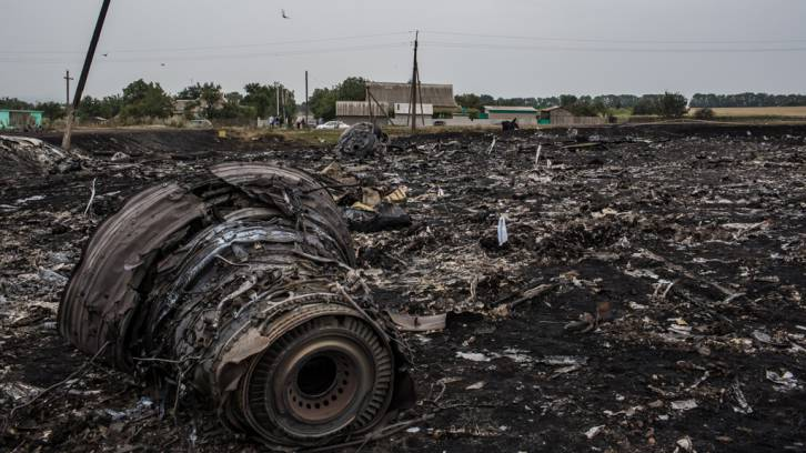The wreckage of Malaysia Airlines flight MH17 near the village of Rassipnoe. (AFP Photo / Dominique Faget)