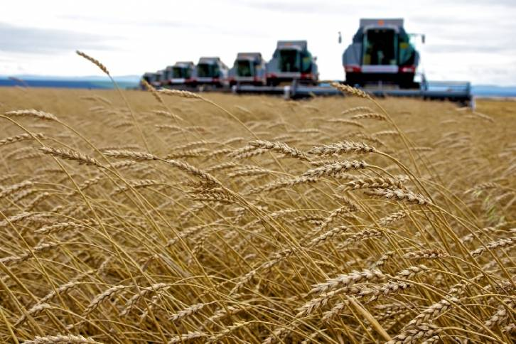 <figcaption>Russia was world's fourth-largest wheat exporter last year</figcaption>