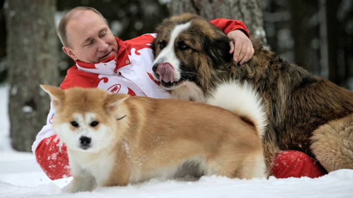 <figcaption>Practicing Judo neck holds on friendly dogs. Typical for a monster like Putin.</figcaption>