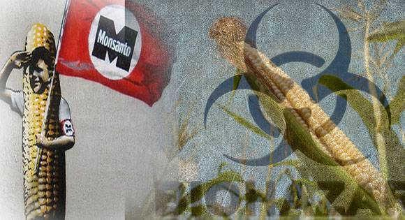 <figcaption>Monsanto's next target: Ukraine, long considered 'the bread basket of Europe'</figcaption>