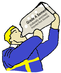 <figcaption>The most accurate depiction of Sweden I was able to find to date.</figcaption>