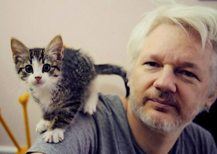 <figcaption>Assange with his cat, now missing</figcaption>