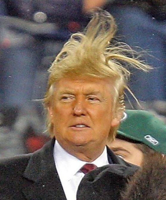 <figcaption>Trump's fake hair, contacting the mothership</figcaption>