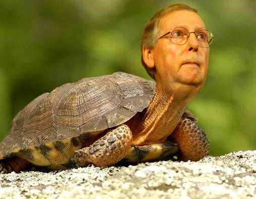 <figcaption>Mitch. A a near-sighted neocon turtle on quaaludes.</figcaption>